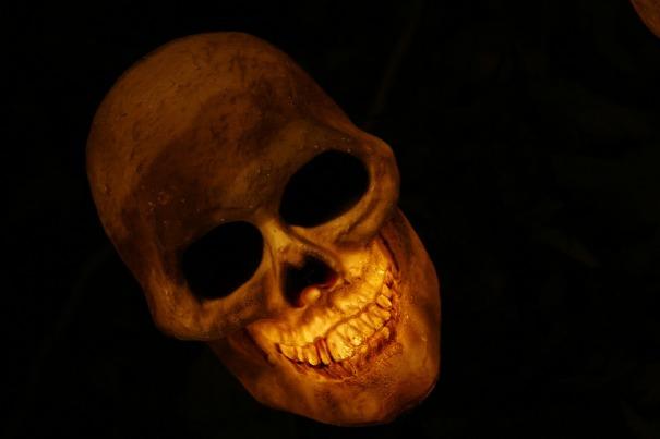 skull-570975_1280